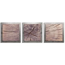 Adam Schwoeppe Cracked Wood Essence Silver 38in x 12in Contemporary Style Wood Wall Art