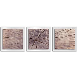 Adam Schwoeppe Cracked Wood Essence White 38in x 12in Contemporary Style Wood Wall Art