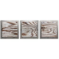 Adam Schwoeppe Weathered Wood Essence Silver 38in x 12in Contemporary Style Wood Wall Art