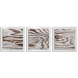 Adam Schwoeppe Weathered Wood Essence White 38in x 12in Contemporary Style Wood Wall Art