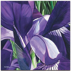 Traditional Wall Art Heart of a Purple Iris - Floral Decor on Metal or Plexiglass