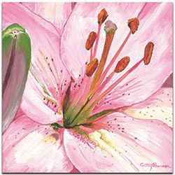 Traditional Wall Art Heart of a Pink Lily - Floral Decor on Metal or Plexiglass