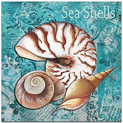 Beach Decor Sea Shells - Coastal Bathroom Art on Metal or Acrylic