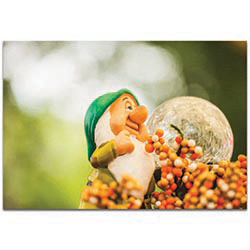 Eclectic Wall Art Dwarf Statue - Statues Decor on Metal or Plexiglass