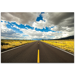 Americana Wall Art Road Trip - Open Road Decor on Metal or Plexiglass