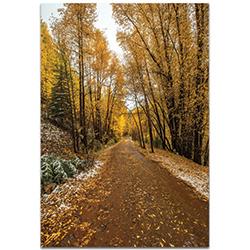 Landscape Photography Mountain Pass - Autumn Trees Art on Metal or Plexiglass