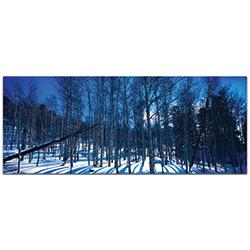 Landscape Photography Aspen Blues - Winter Scene Art on Metal or Plexiglass