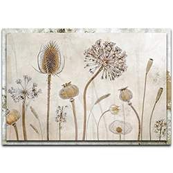 Mandy Disher Growing Old 32in x 22in Modern Farmhouse Floral on Metal