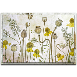Mandy Disher Poppies and Helenium 32in x 22in Modern Farmhouse Floral on Metal