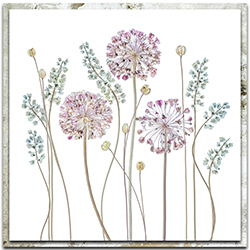 Mandy Disher Allium 22in x 22in Modern Farmhouse Floral on Metal