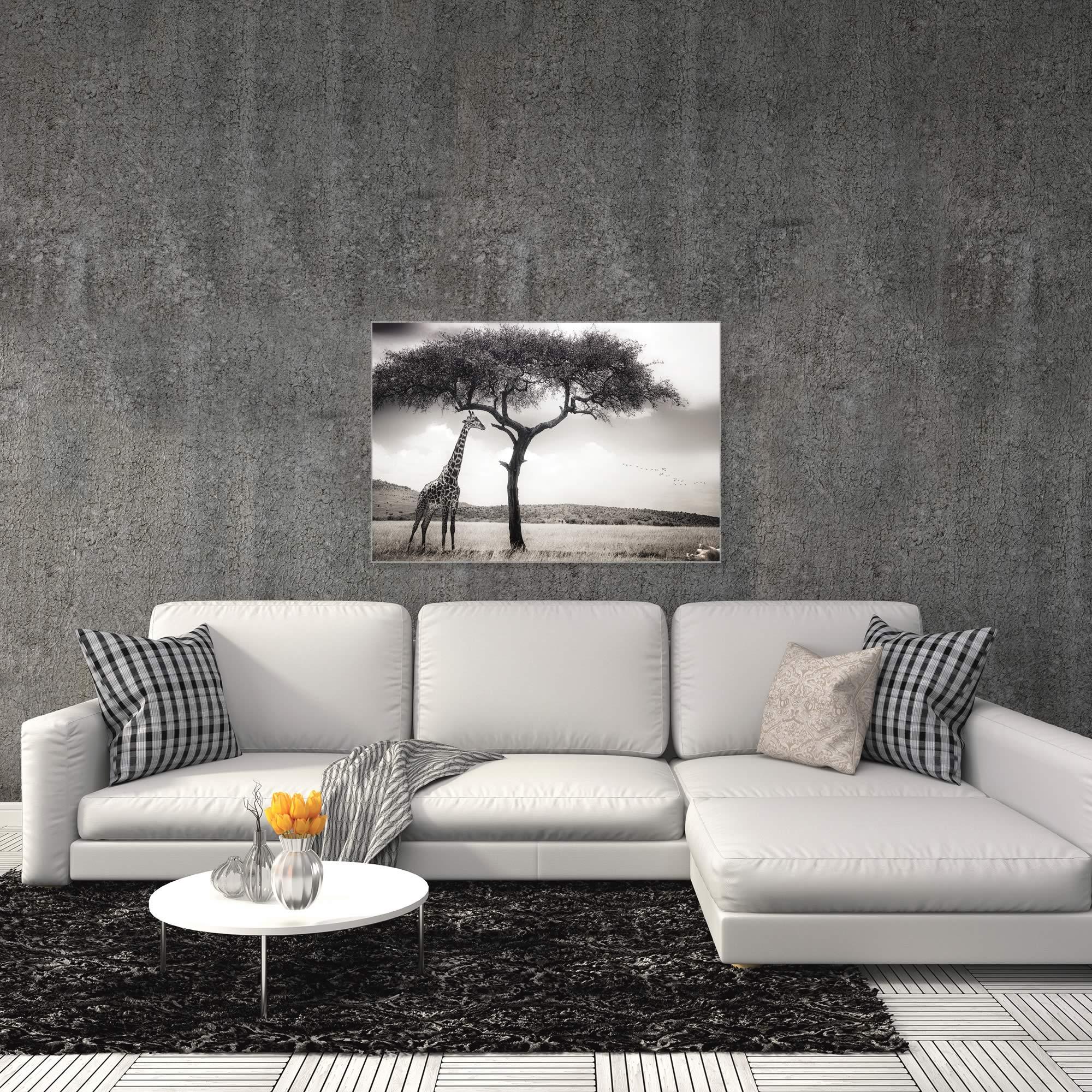 Under the African Sun by Piet Flour - Giraffe Wall Art on Metal or Acrylic - Alternate View 3