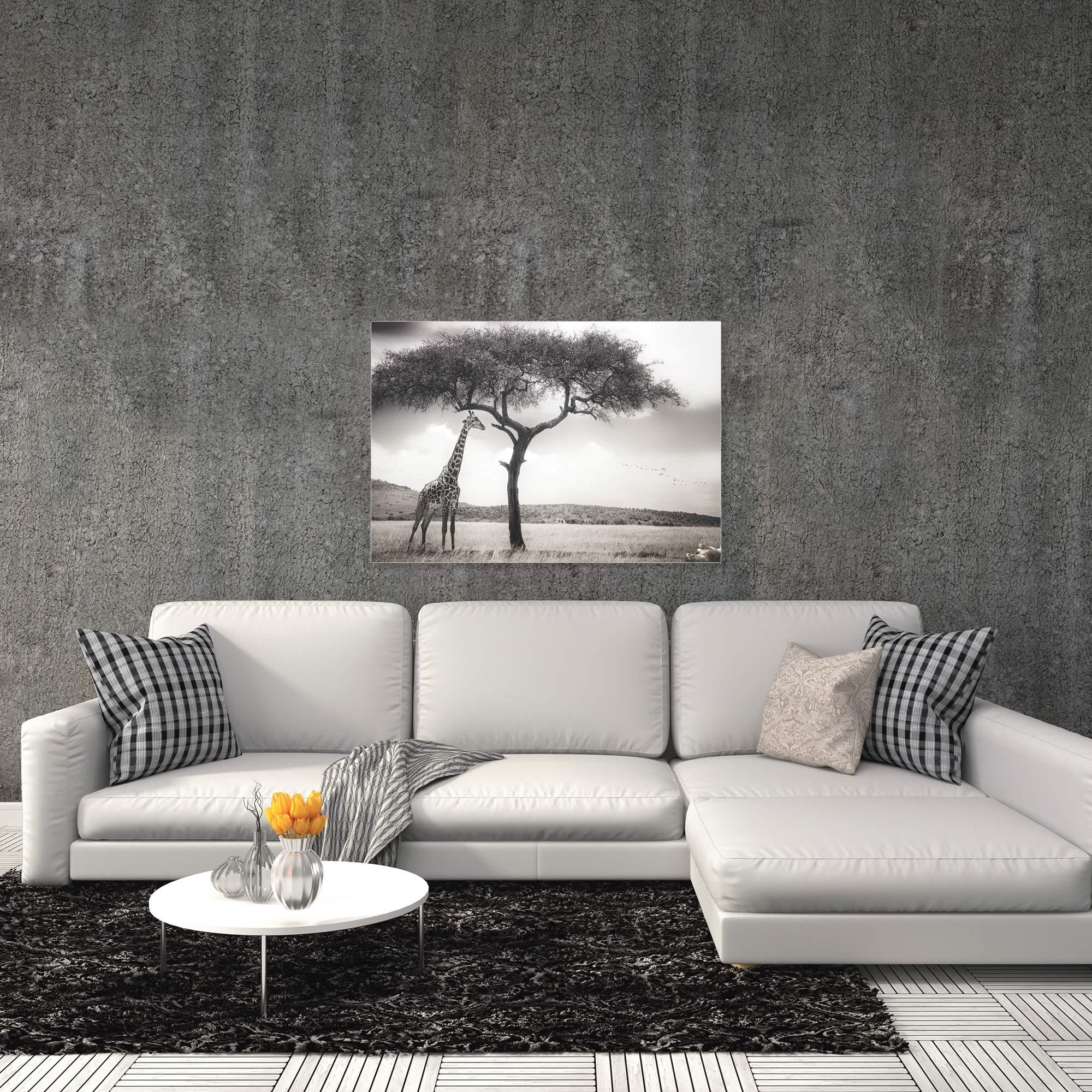 Under the African Sun by Piet Flour - Giraffe Wall Art on Metal or Acrylic - Alternate View 1