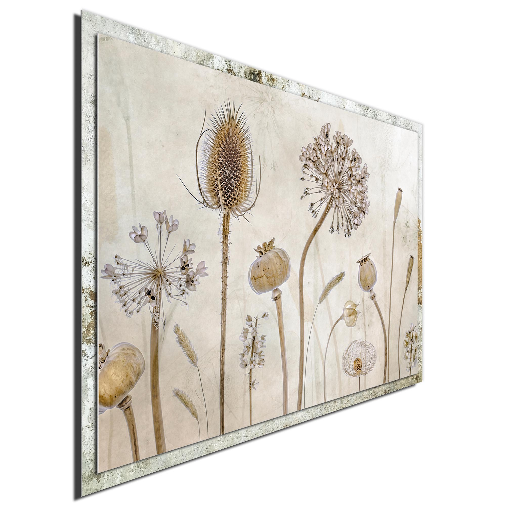 Growing Old by Mandy Disher - Modern Farmhouse Floral on Metal - Image 2