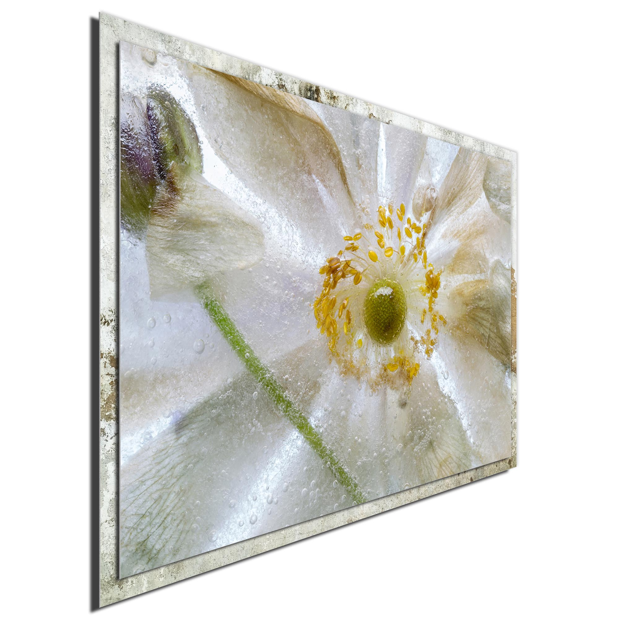 Floral Freeze by Mandy Disher - Modern Farmhouse Floral on Metal - Image 2