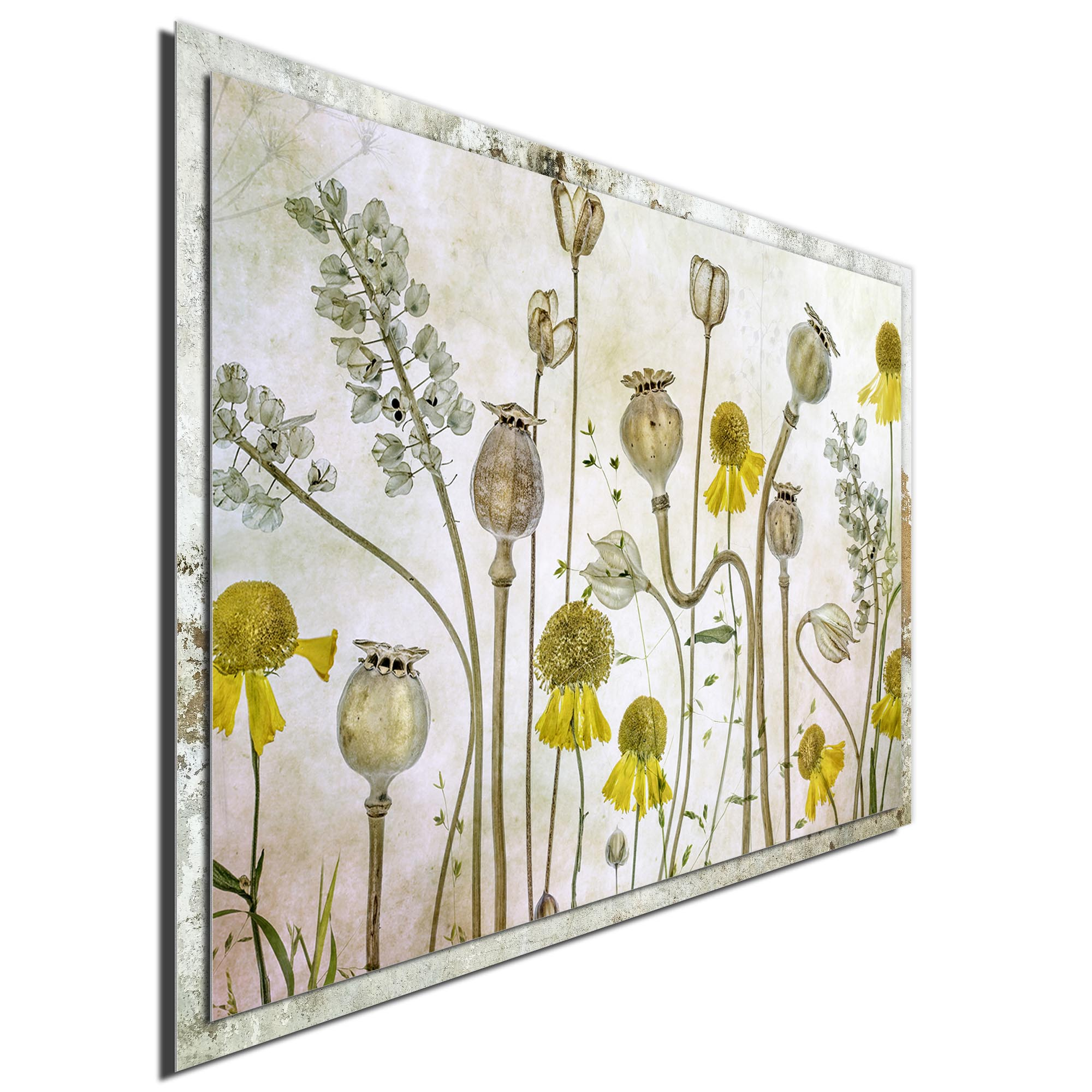 Poppies and Helenium by Mandy Disher - Modern Farmhouse Floral on Metal - Image 2