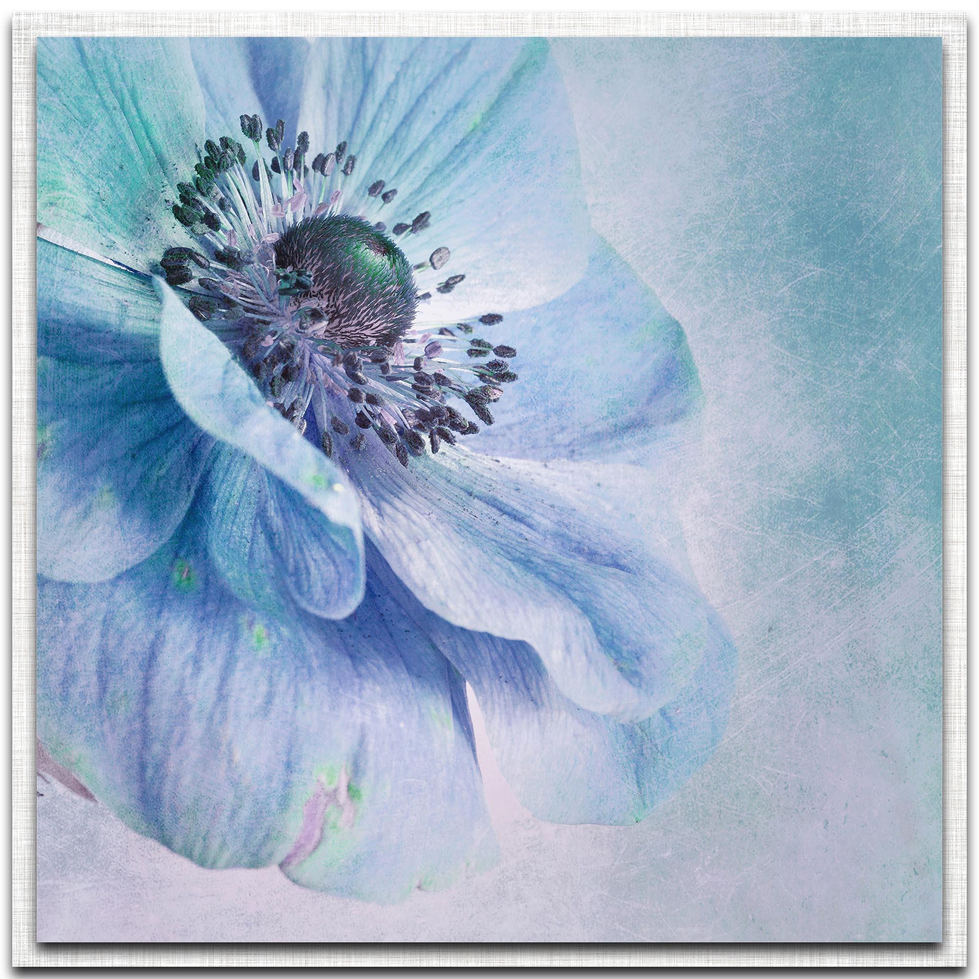 Priska Wettstein 'Shades of Blue' 22in x 22in Modern Farmhouse Floral on Metal