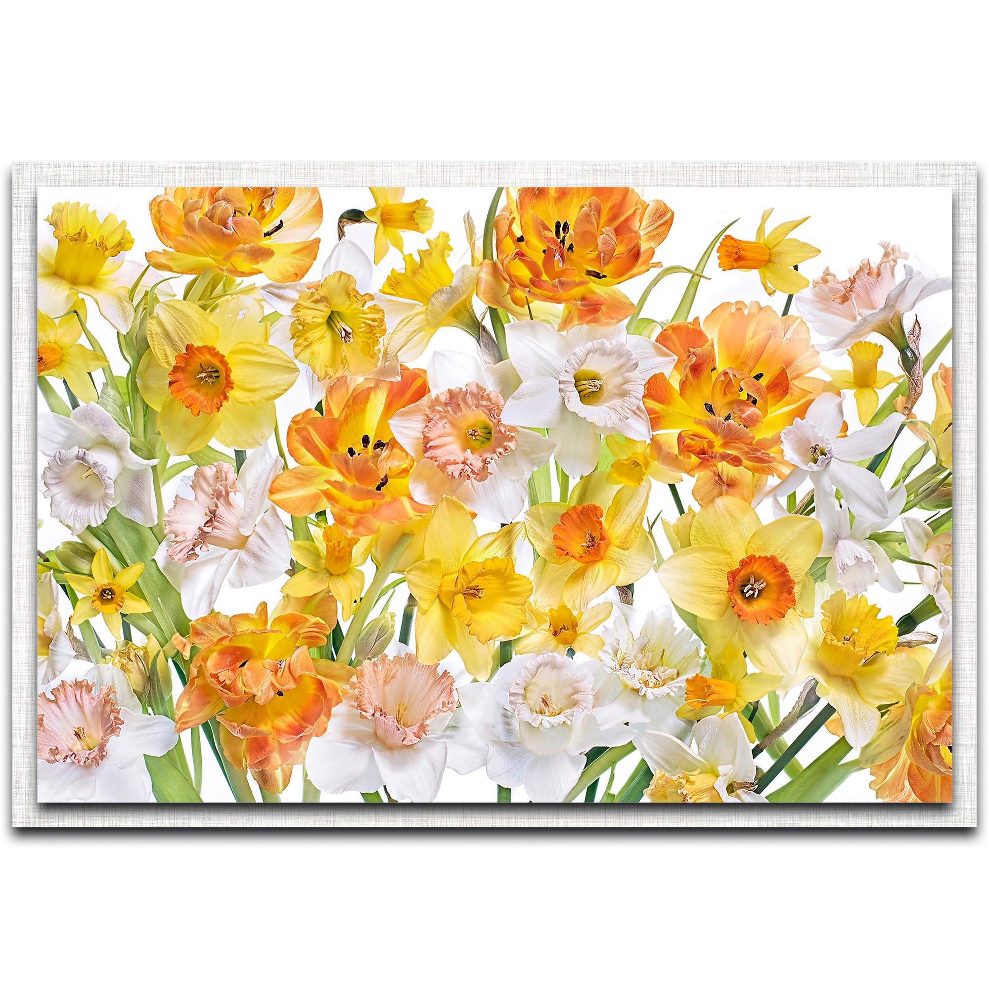 Jacky Parker 'Spirited' 32in x 22in Modern Farmhouse Floral on Metal