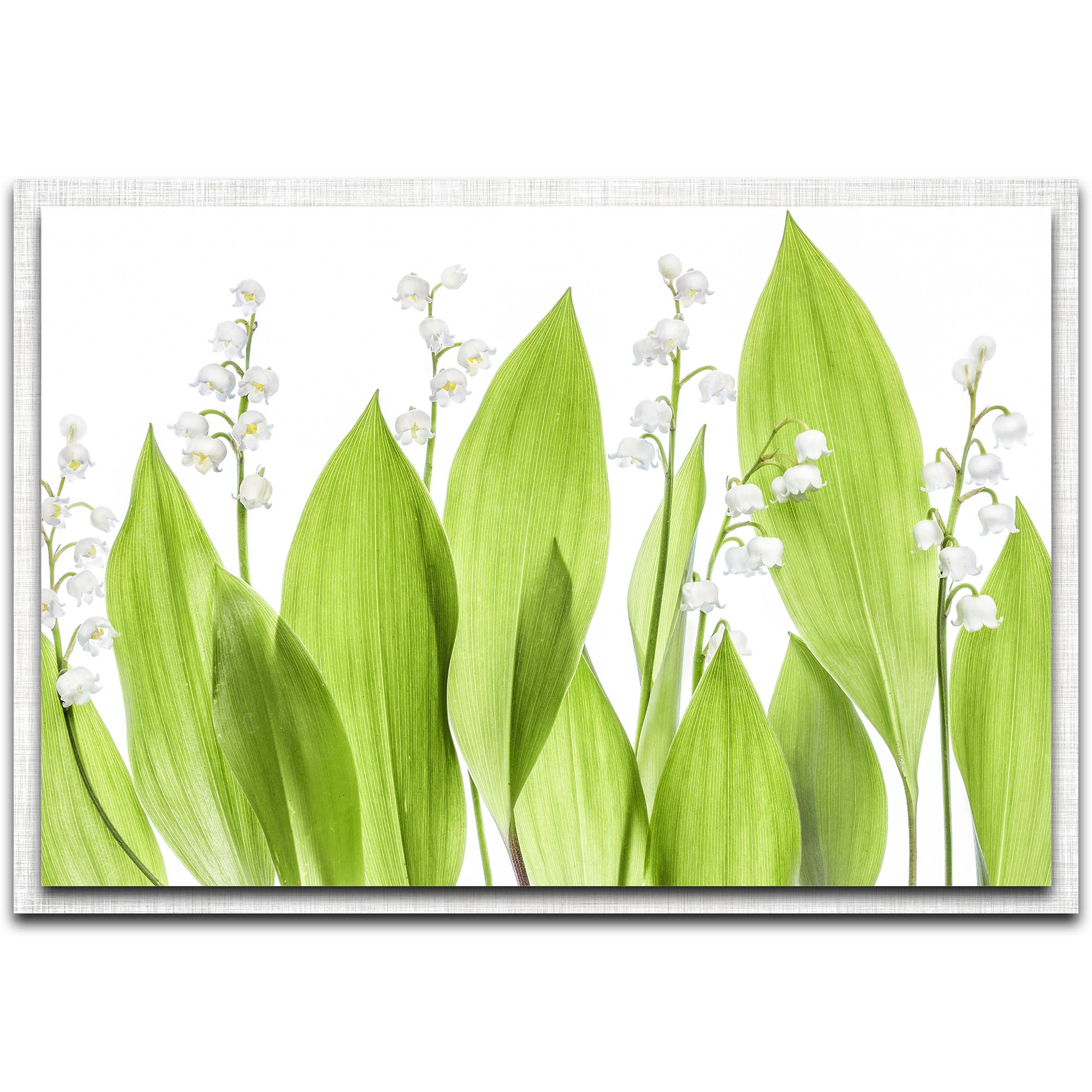 Mandy Disher 'Lily of the Valley' 32in x 22in Modern Farmhouse Floral on Metal