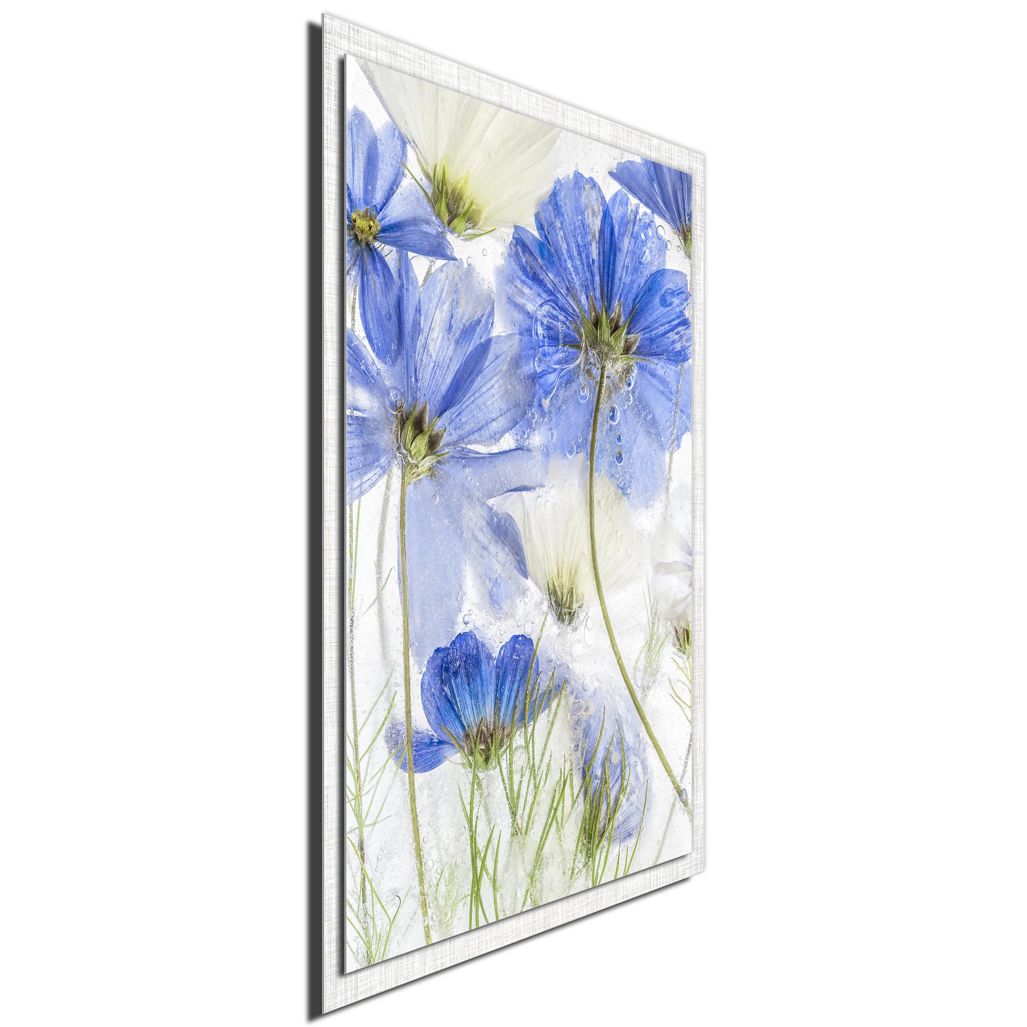 Cosmos Blue by Mandy Disher - Modern Farmhouse Floral on Metal - Image 2