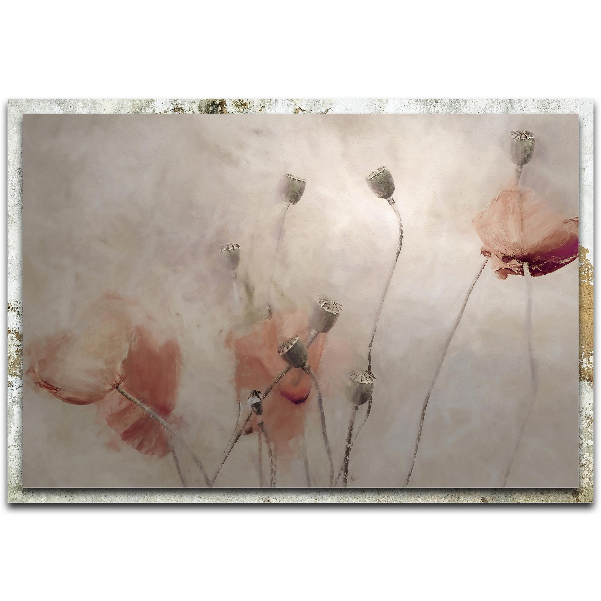 Gilbert Claes 'Frolicking Hats' 32in x 22in Modern Farmhouse Floral on Metal