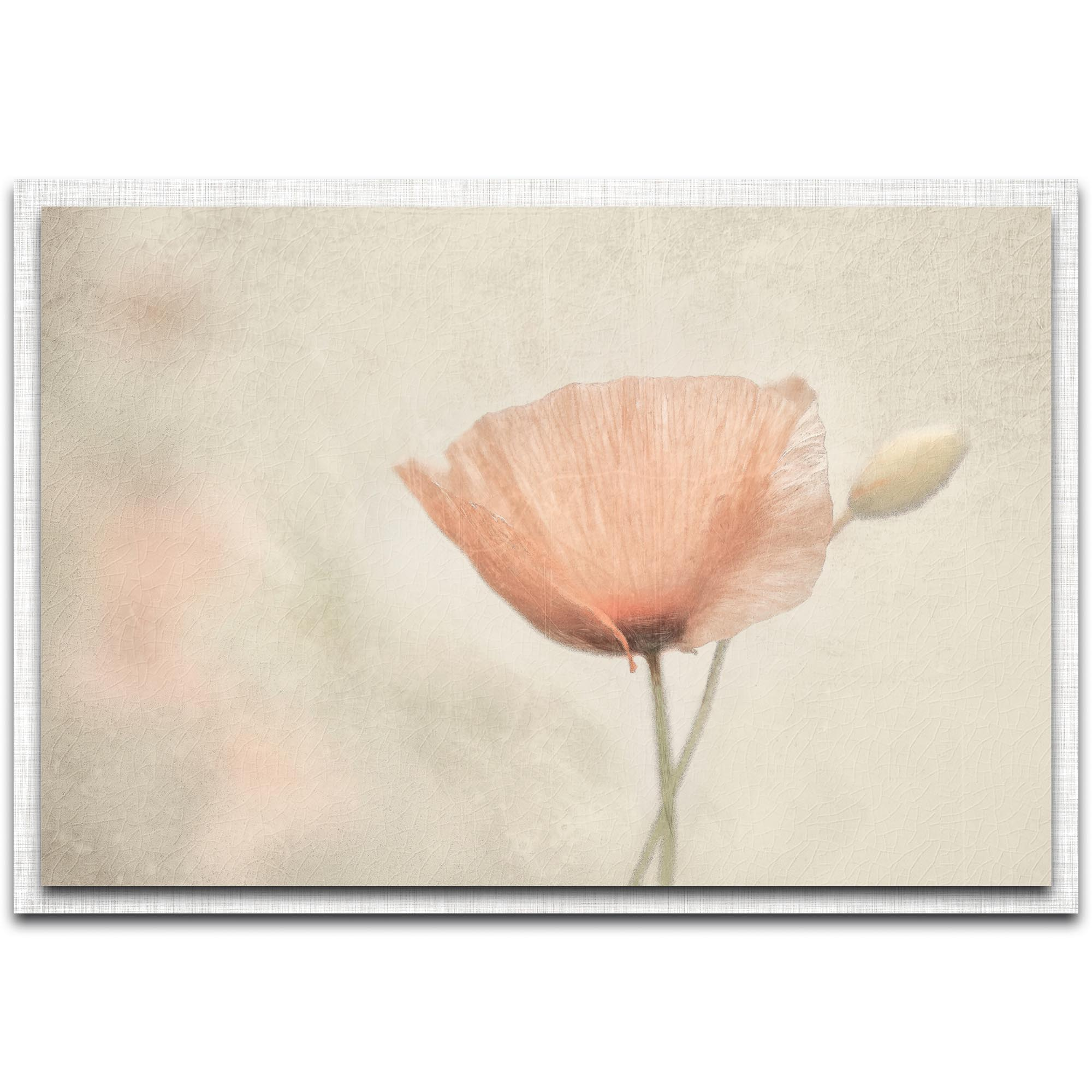 Gilbert Claes 'Jewel of Nature' 32in x 22in Modern Farmhouse Floral on Metal