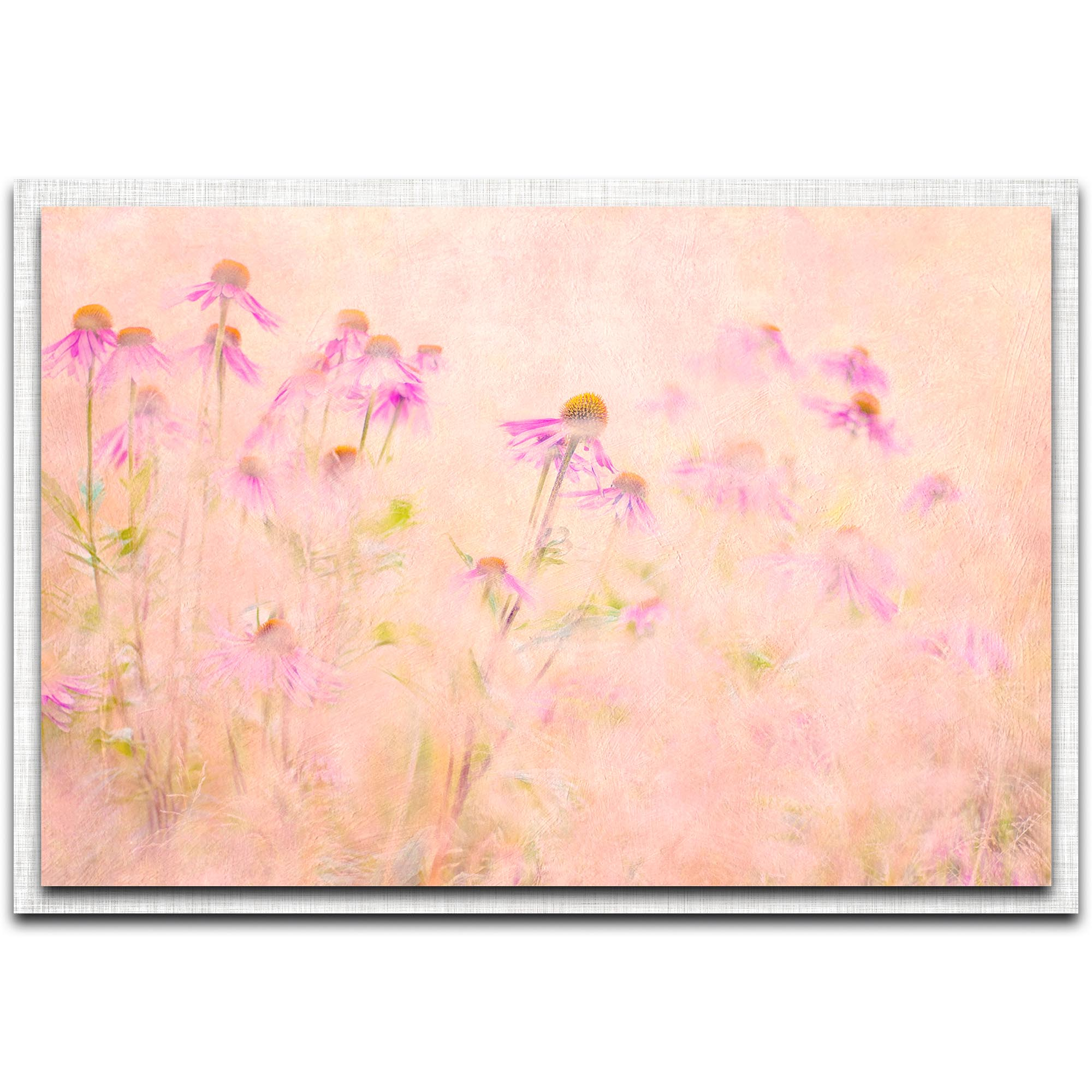 Jacky Parker 'Summertime' 32in x 22in Modern Farmhouse Floral on Metal