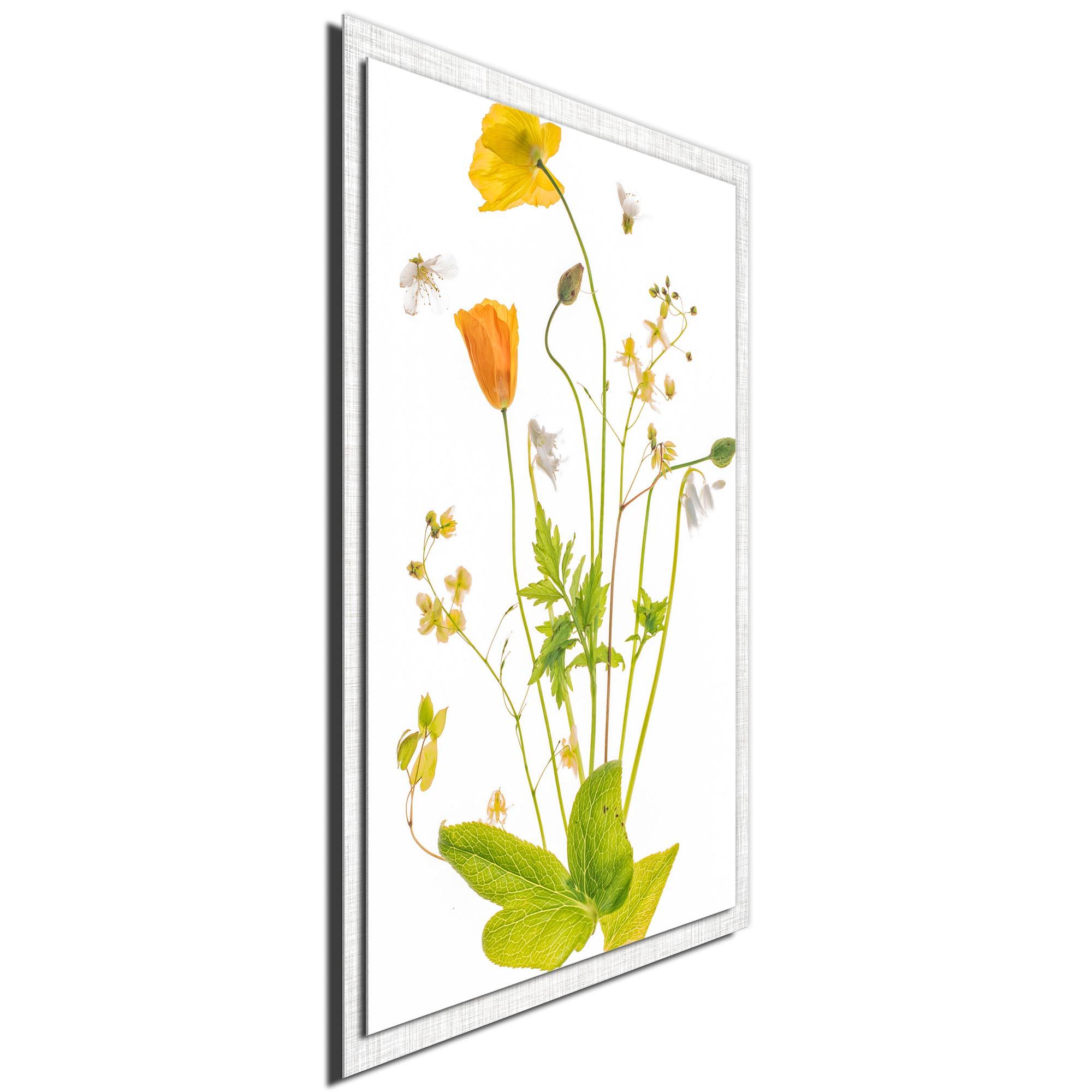 Fairy Garden by Sharon Williams - Modern Farmhouse Floral on Metal - Image 2