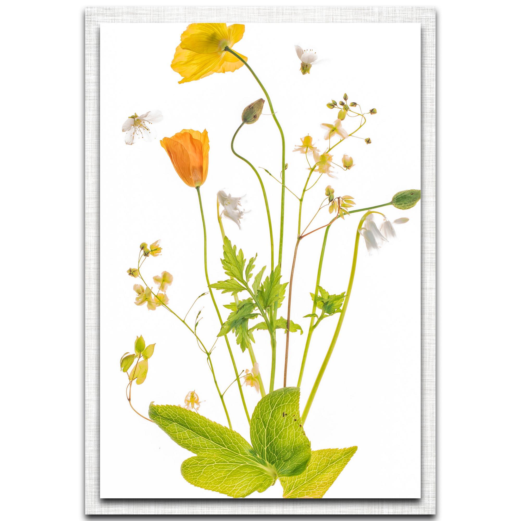 Sharon Williams 'Fairy Garden' 22in x 32in Modern Farmhouse Floral on Metal