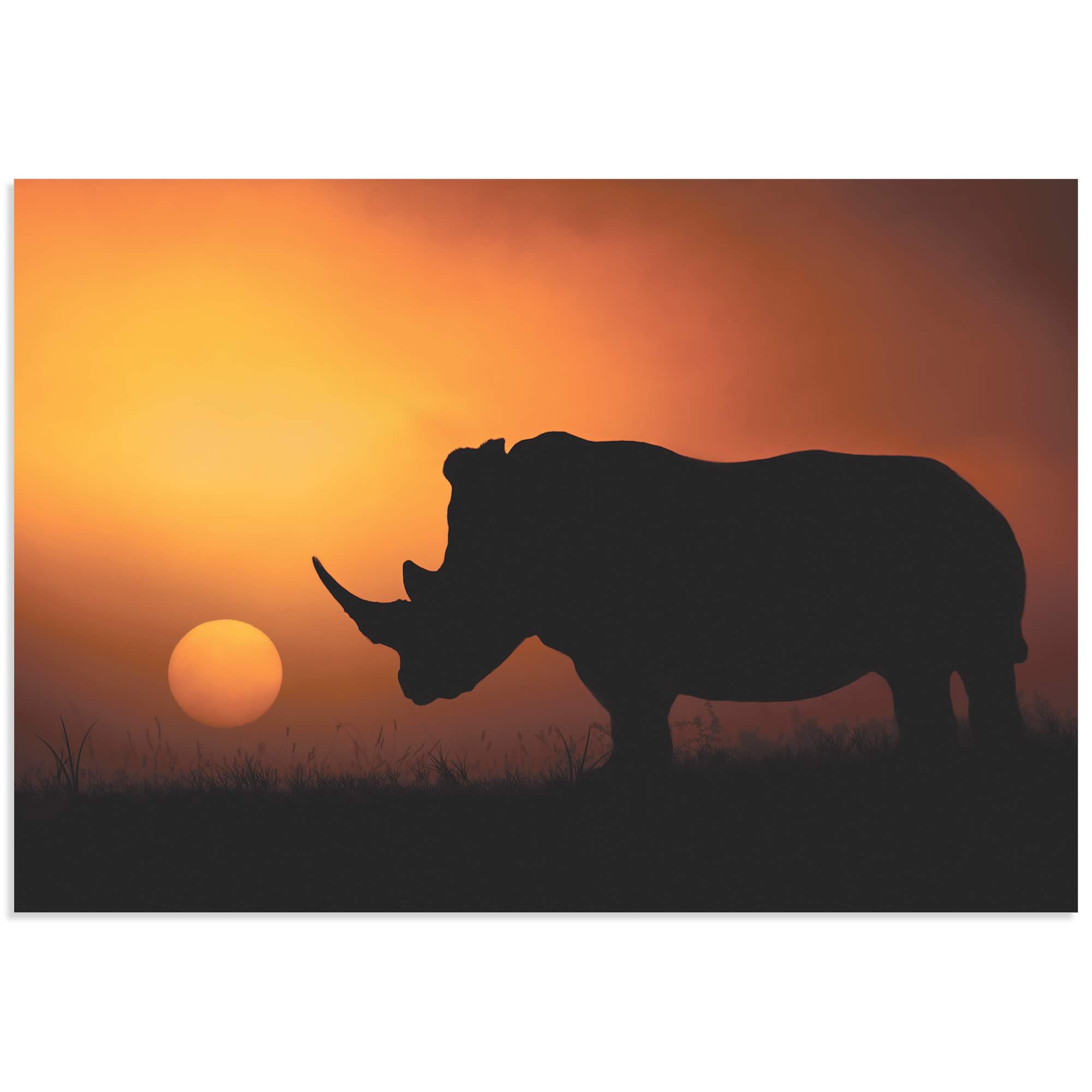 Rhino Sunrise by Mario Moreno - Rhino Silhouette Art on Metal or Acrylic