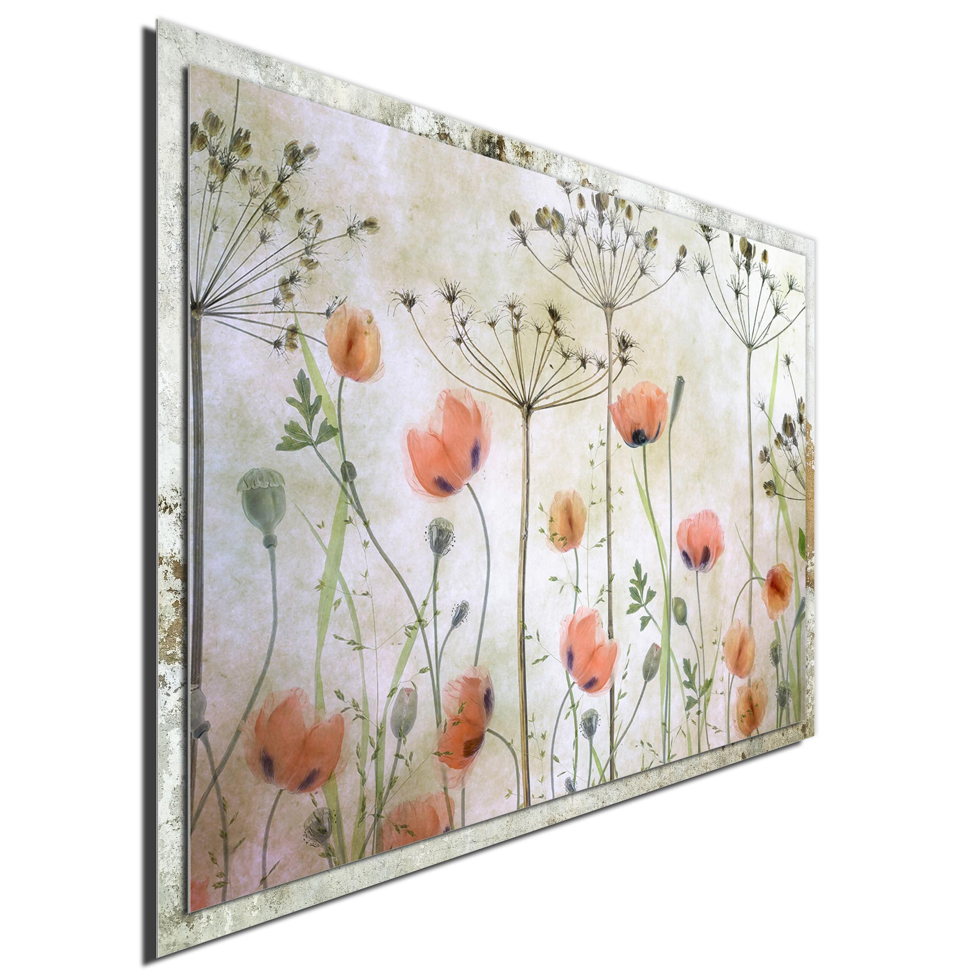 Poppy Meadow by Mandy Disher - Modern Farmhouse Floral on Metal - Image 2