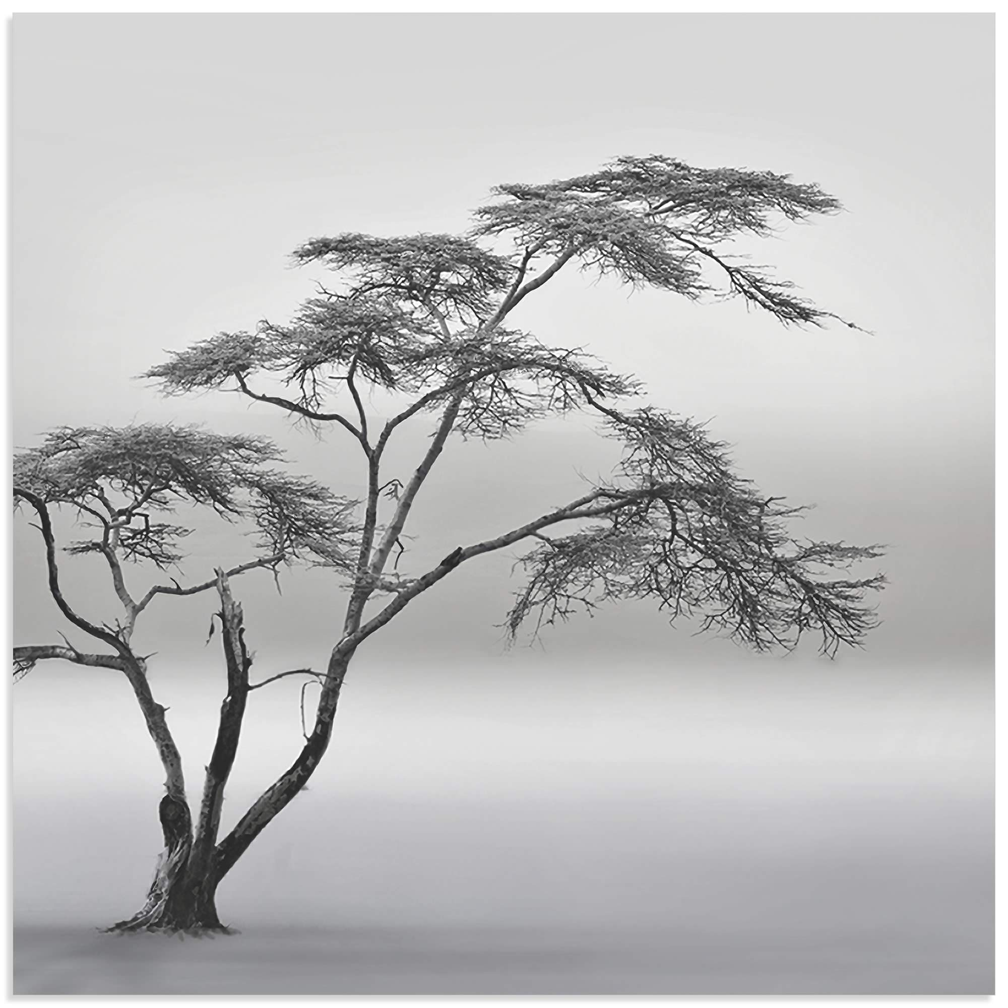 A Very Long Story by Piet Flour - Minimalist Tree Art on Metal or Acrylic