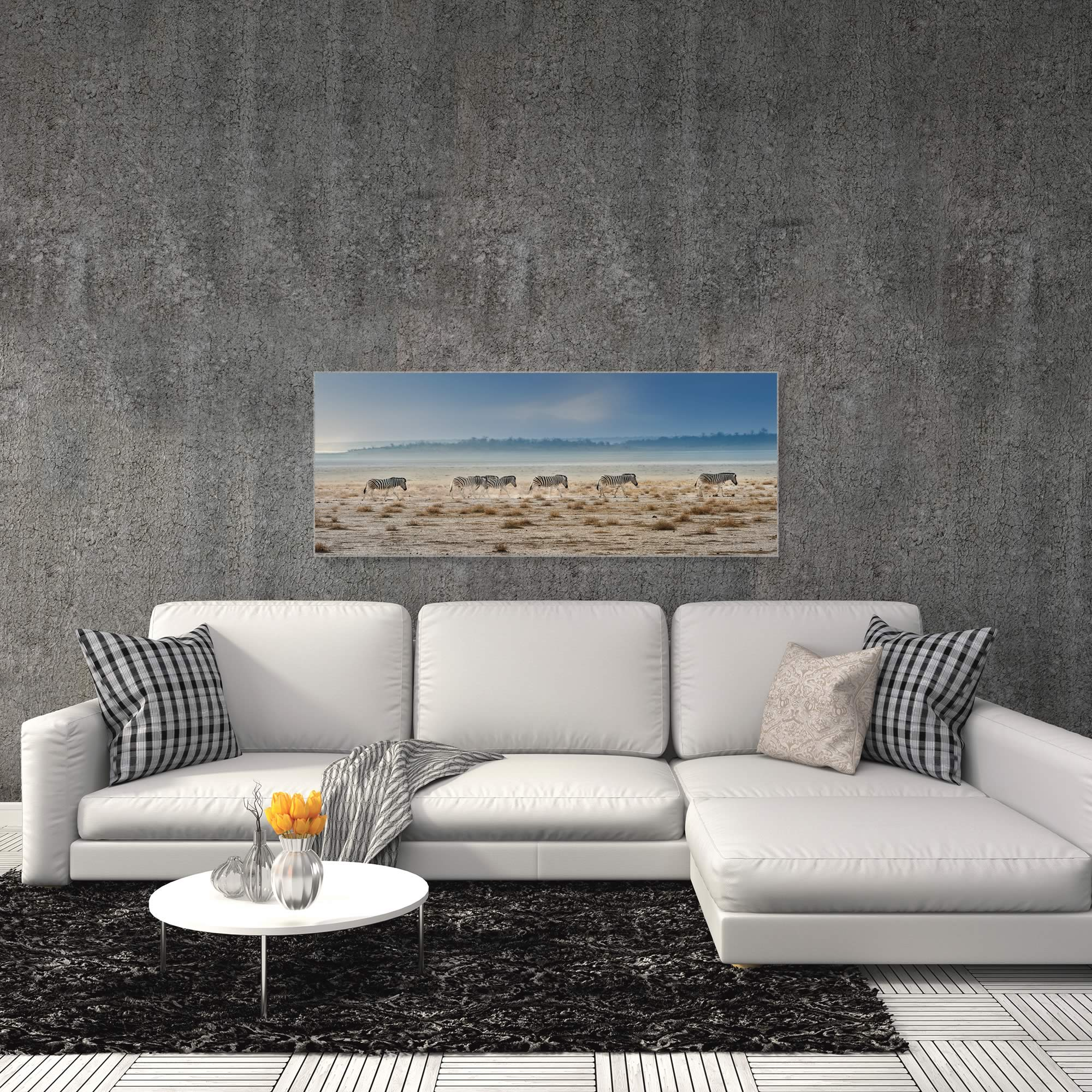 Zebra Promenade by Piet Flour - Zebra Wall Art on Metal or Acrylic - Alternate View 3