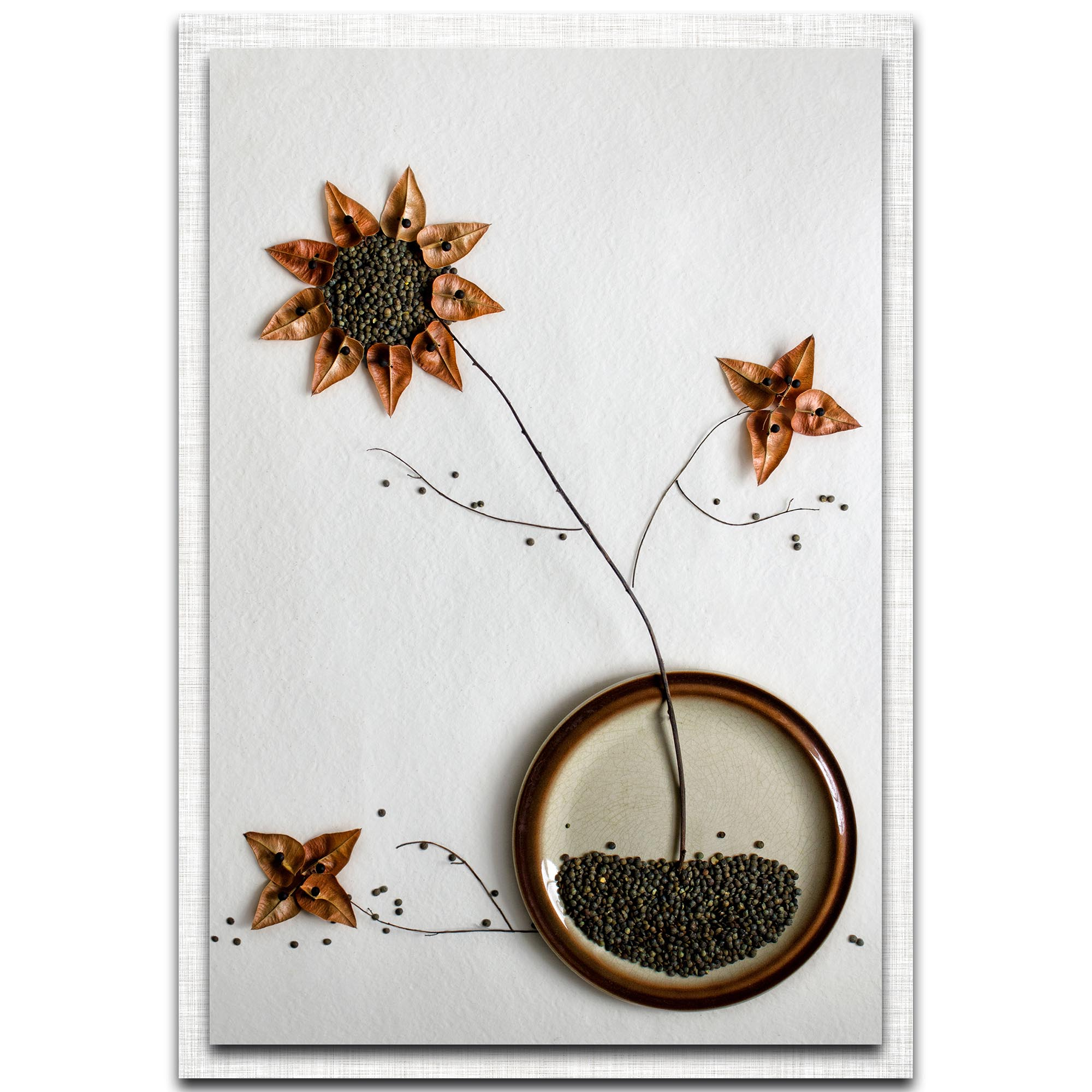 Dimitar Lazarov 'Herbarium' 22in x 32in Modern Farmhouse Floral on Metal