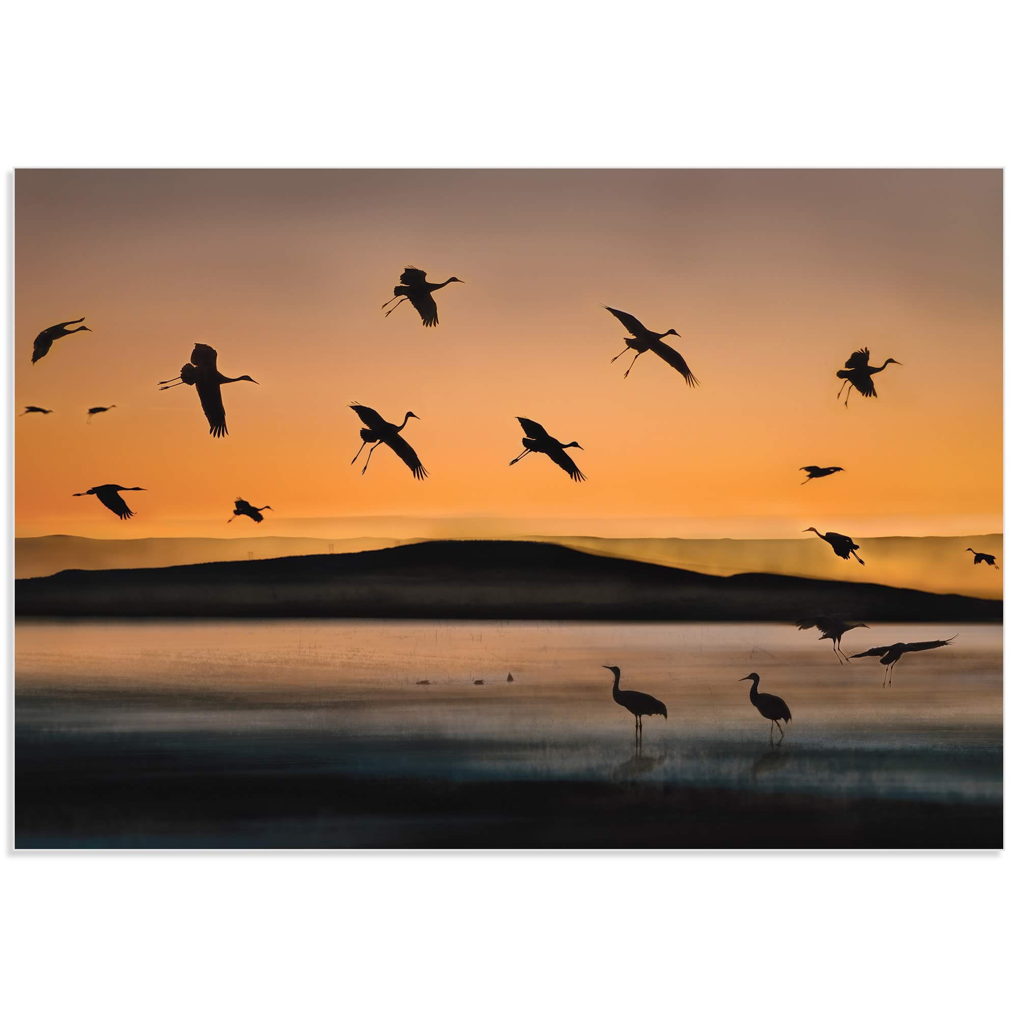 Cranes at Sunset by Shenshen Dou - Bird Silhouette Art on Metal or Acrylic - Alternate View 2