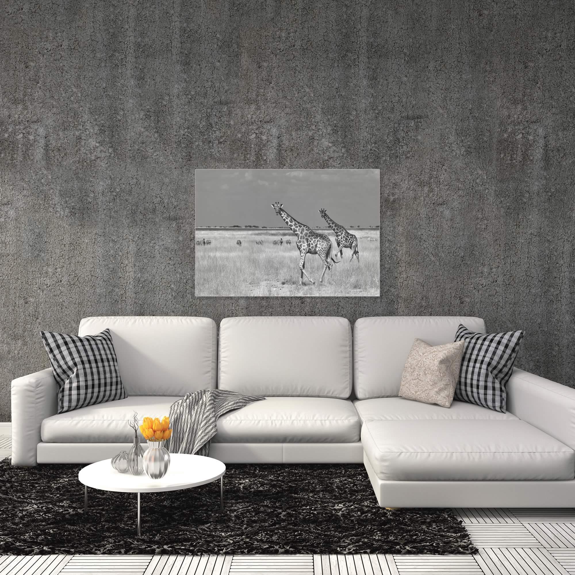 Savanna Favorites by Mathilde Guillemot - Giraffe and Zebra Art on Metal or Acrylic - Alternate View 1