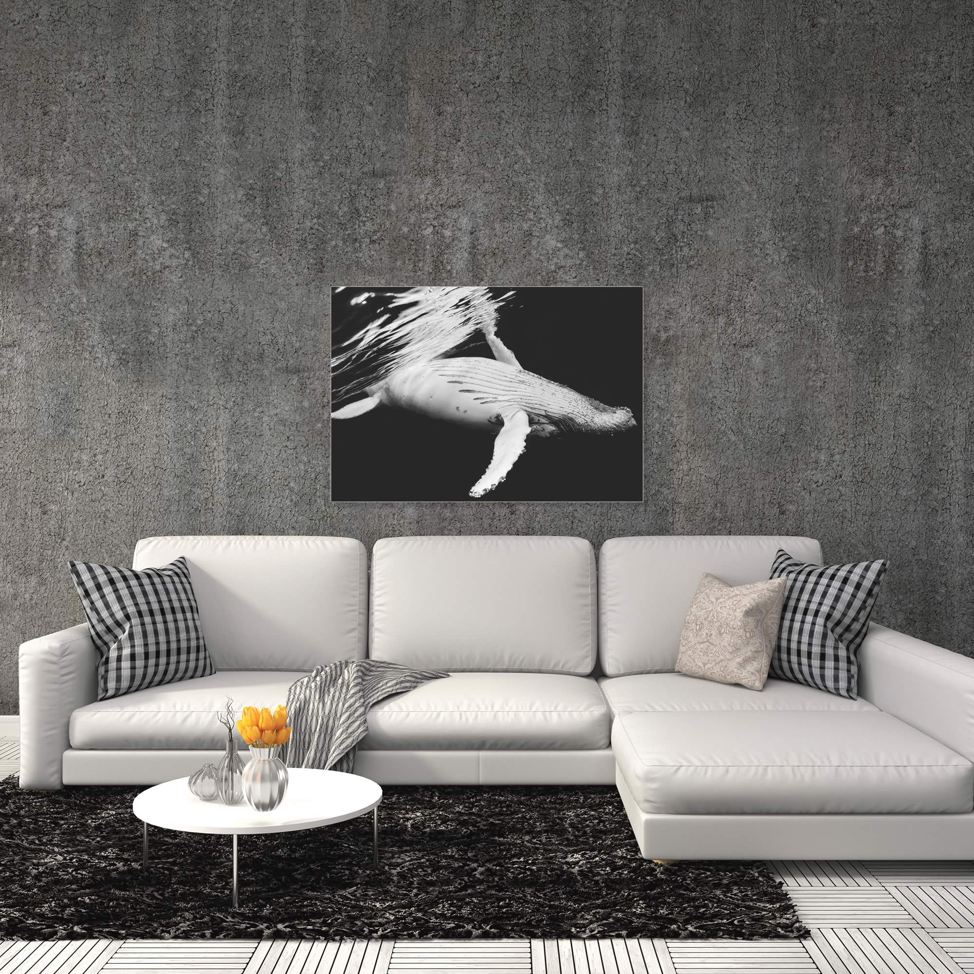 Black and White Whale by Barathieu Gabriel - Contemporary Whale Art on Metal or Acrylic - Alternate View 1