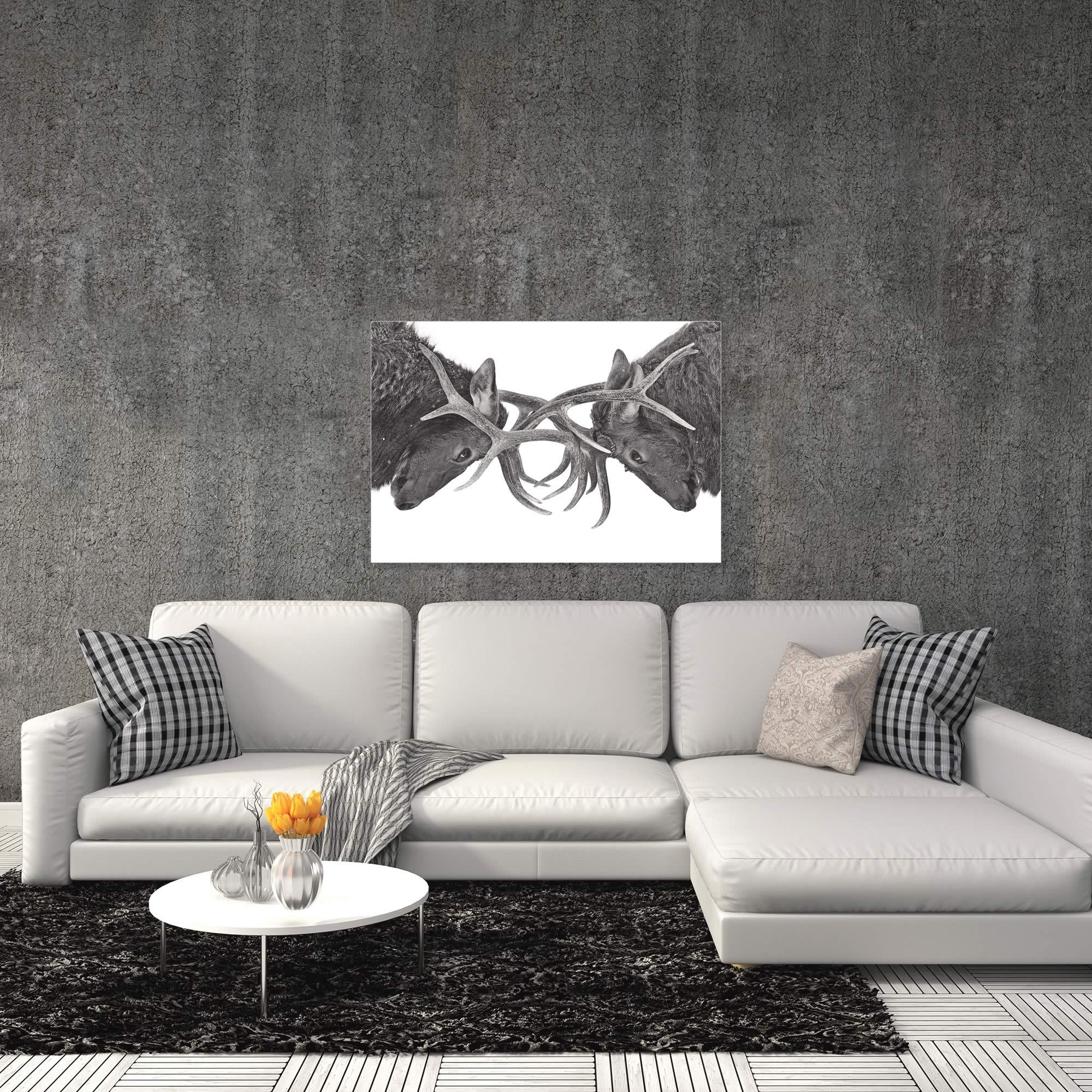 Antler to Antler by Jim Cumming - Deer Antlers Art on Metal or Acrylic - Alternate View 1